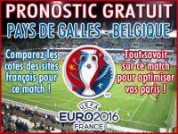 Pronostic Pays de Galles Belgique Euro 2016 - Foot